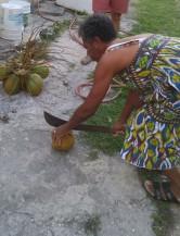 judy coconut